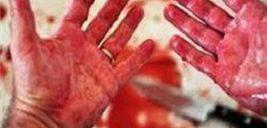 قتل عام ۳ عضو خانواده ثروتمند با تبر پسر جوان در ویلای لوکس +عکس