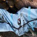 صاحب جسد سوخته در تهران به همسر دوست صمیمی اش نظر داشت! + عکس
