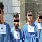 گربه های وحشی مشهد و اعتراف های هولناک از شکستن دست زنها تا ضربه کلنگی با قمه +تصاویر