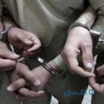 قتل وحشیانه راننده زن آژانس ایرانی توسط سه افغان در پارک جنگلی