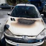 پسر تاجر ترک دختر تهرانی را داخل ۲۰۶ زنده زنده به آتش کشید
