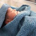 ماجرای جنجالی مرگ نوزاد رها شده در حاشیه شهر اصفهان