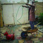 سوژه های خنده دار فضای مجازی سری 281 +تصاویر