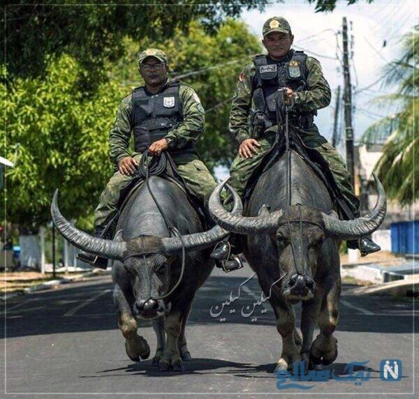 پلیس در برزیل