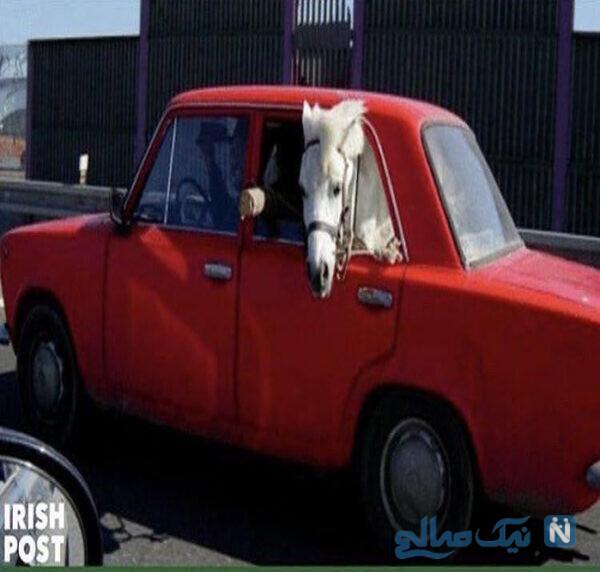 ماشین فراری یک اسب با ماشین قرمز