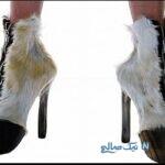 عکس های خنده دار از کفش مدل پای جنی تا پیامک کفش حجاب