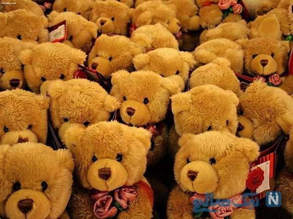 خرس های ولنتیاین آلوده به کرونا