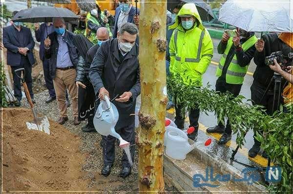وقتی توی بارون به درختا آب میدی