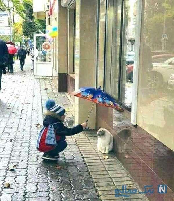 مهربانی هست