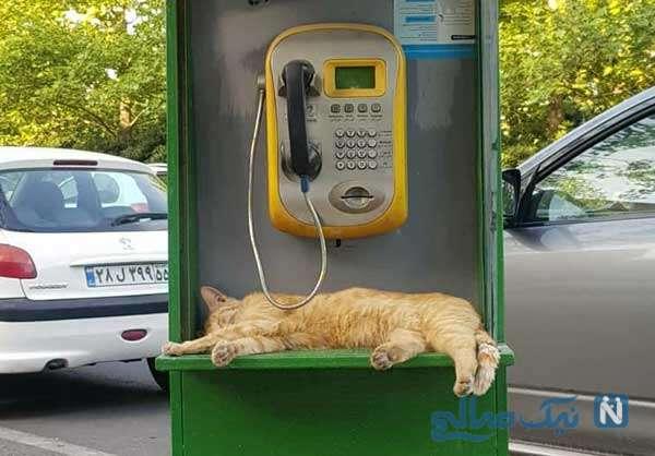 در انتظار تماس