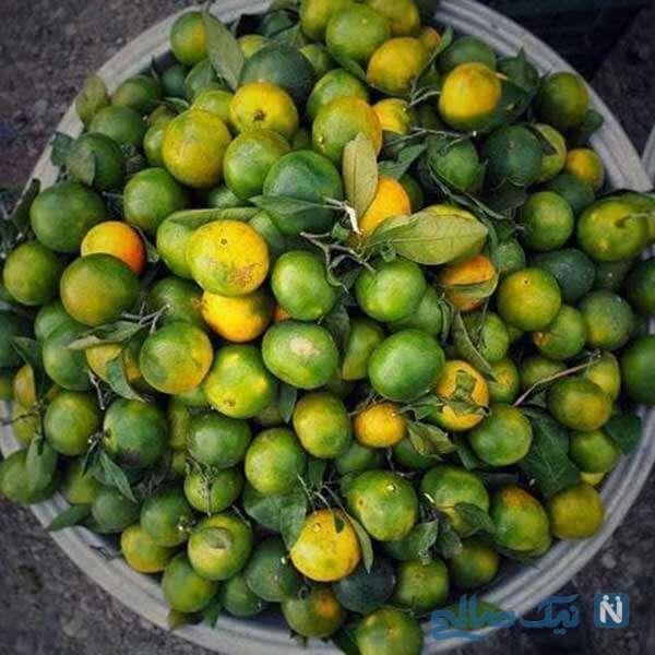 فصل نارنگی