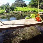 راهنمای سفر به جزیره آروبا جزیره ای در جنوب دریای کارائیب