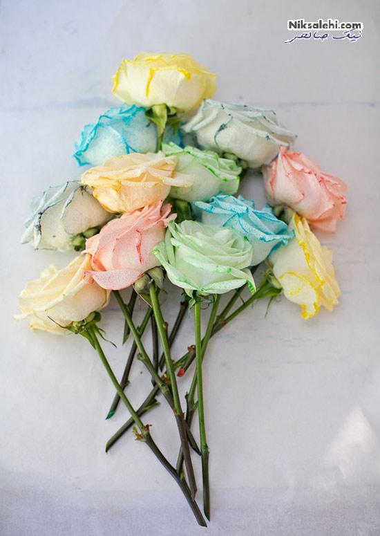روش تبدیل گل های رز سفید به گل های رنگی +عکس