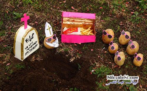 هنرمندی که به سیب زمینی ها شخصیت داد! +عکس