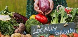 آشنایی با مفهوم سالم خوری و روش های انتخاب غذاهای سالم