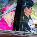 ملکه الیزابت دوم و ماجرای جالب توریست هایی که او را نشناختند