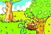 پشیمونی درخت سیب