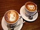 آیا تابحال قهوه مبادا به کسی داده اید؟!!