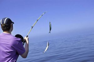 داستان صیاد ضعیف و ماهی قوی , داستان آموزنده وکوتاه