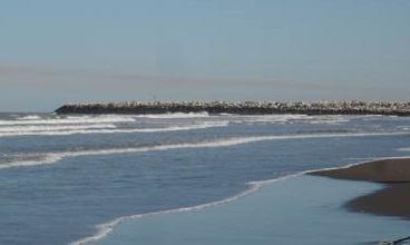 داستان یک روز کنار دریا