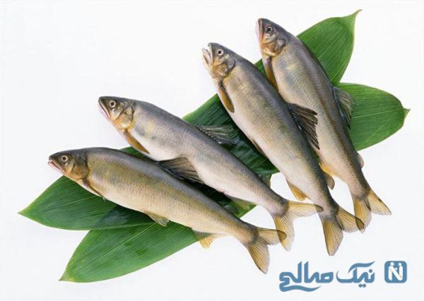 ماهی برای افزایش قد