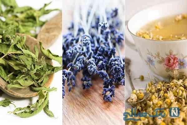 چند گیاه موثر برای درمان اضطراب