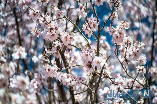 غذاهای ممنوع بهار