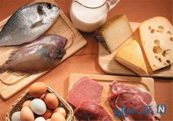 منبع سرشاری از پروتئین