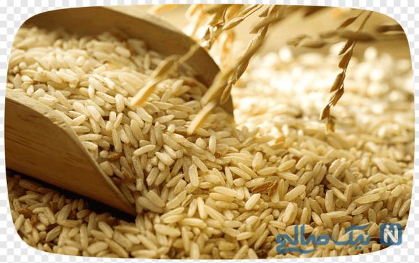 سبوس گندم یا برنج