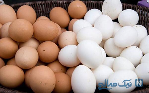 همیشه به همراه تخم مرغ , این خوراکی را هم بخورید