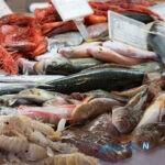 اصول خوردن ماهی و میگو در طب سنتی را بدانید