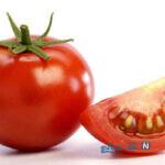 میوه های آبدار که بدنتان را در مقابل کم آب شدن حفظ می کنند!