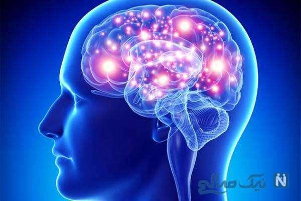 سالمون کمک به حفظ سلامت مغز