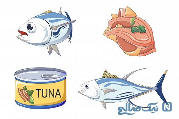 آیا از عوارض و مضرات مصرف تن ماهی اطلاعی دارید؟!