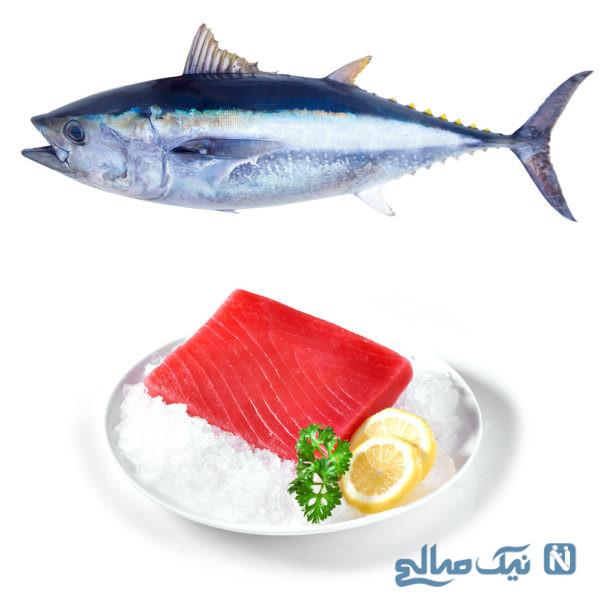 فواید و مضرات تن ماهی