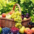 بهترین روش مصرف میوه در فصل تابستان!