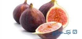 خواص بی نظیر میوه انجیر برای سلامتی!