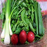 فواید بی نظیر سبزی خوردن برای بدن!