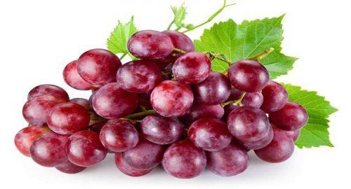 فایده های انگور قرمز