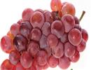 انگور قرمز اثرات این بیماری را کاهش می دهد