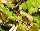 اثرات مفید دانه کنجد برای رفع این مشکلات جسمی!