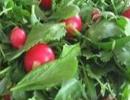 مصرف سبزیجات تازه راه حلی مناسب برای درمان این بیماری!