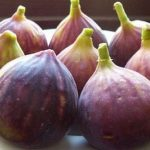 میوه انجیر و خاصیت های درمانی آن برای سلامتی بدن!