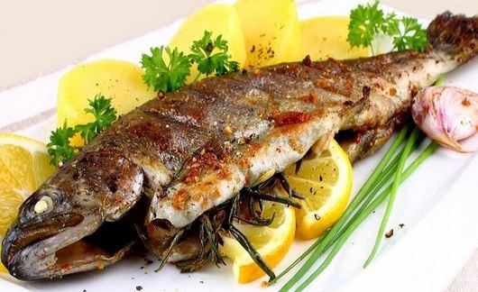 ماهی پرورشی یا ماهی دریایی کدام یک بهتر است؟!