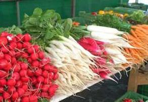 سبزی خوردن و ویژگی های تغذیه ای و درمانی که دارد!