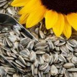 تخمه آفتابگردان و جوانه گندم به چه میزان کالری دارند؟!