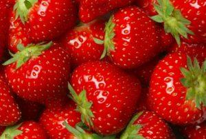 میوه توت فرنگی