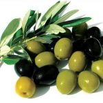 ده دلیل ضرورت خوردن زیتون این میوه خوشمزه را بدانید!