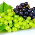 بیماری آلزایمر را با خوردن این میوه درمان کنید!