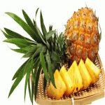 آناناس یکی از میوه های پر از خاصیت!